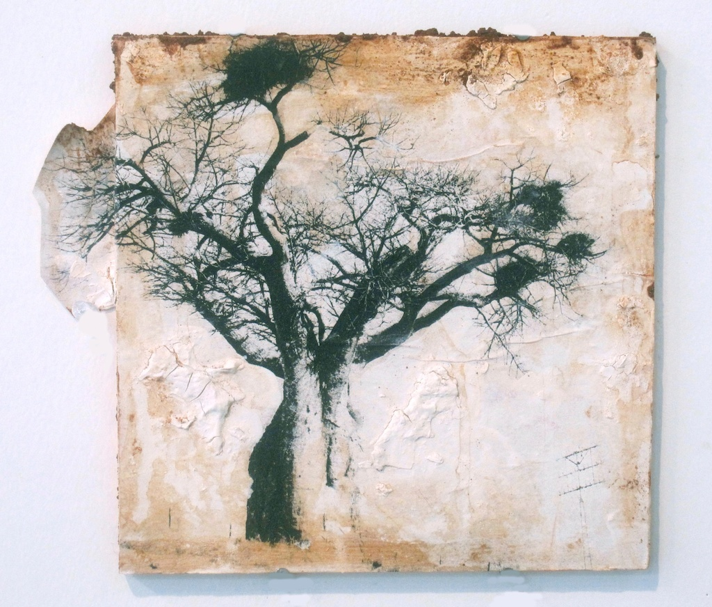 Baobab on the Hill | Solar Print Lithograph, South African Soil, & Acrylic mounted on Panel | 9x10.25  [SOLD}