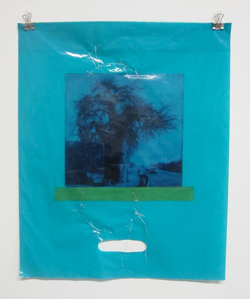 Solitary Baobab #1 (One of installation of 12) | Solar Print Lithograph, Collage & Plastic bag 20x15 each