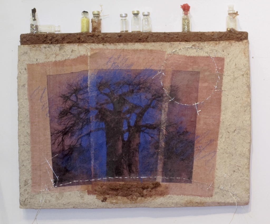 Baobabs' Message #5 | Solar Print Lithograph on Silk mounted on Zebra Dung Paper, South African Soil, Colored Pencil & Immunization Bottles mounted on Canvas | 10.50x12