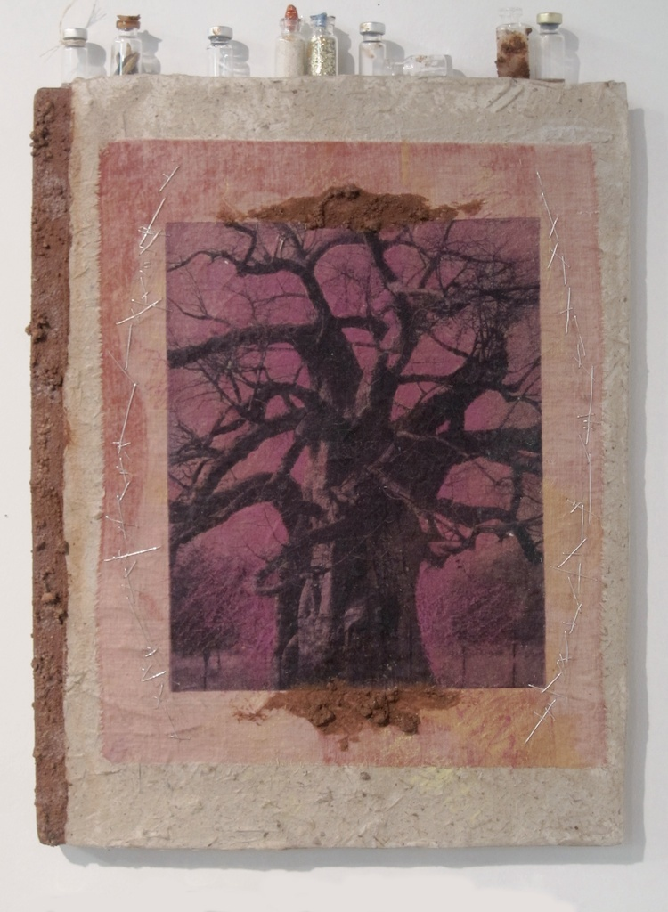 Baobabs' Message 1| Solar Print Lithograph on Silk mounted on Zebra Dung Paper, South African Soil, Colored Pencil & Immunization Bottles mounted on Canvas | 10.50x12  [SOLD]