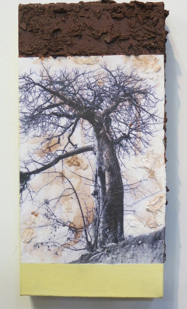 Baobab in Zim | Digital Print, South African Soil & Acrylic mounted on Canvas | 9x6