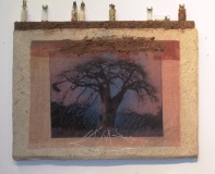 Baobabs' Message #3| Solar Print Lithograph on Silk mounted on Zebra Dung Paper, South African Soil, Colored Pencil & Immunization Bottles mounted on Canvas | 10.50x12 [SOLD}