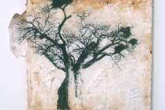 Baobab on the Hill   Solar Print Lithograph, South African Soil, & Acrylic mounted on Panel   9x10.25  [SOLD}