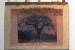 Baobabs' Message #3  Solar Print Lithograph on Silk mounted on Zebra Dung Paper, South African Soil, Colored Pencil & Immunization Bottles mounted on Canvas   10.50x12 [SOLD}