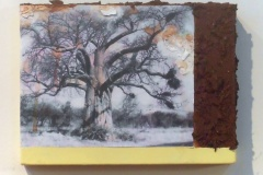 Grand Baobab   Solar Print Lithograph, South African Soil, & Acrylic mounted on Canvas  9x12.5 [SOLD}